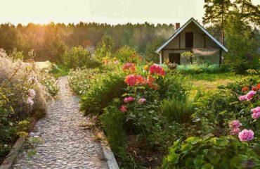 doğanın içinde yazlık ev modelleri